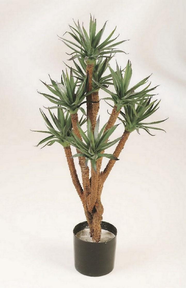 agave-verzweigt-kunstpflanze-stimmungsbild