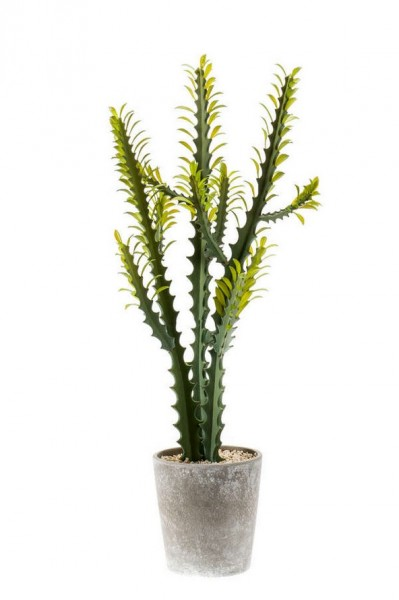 Euphorbia Kunstkaktus 86 cm im Cementtopf