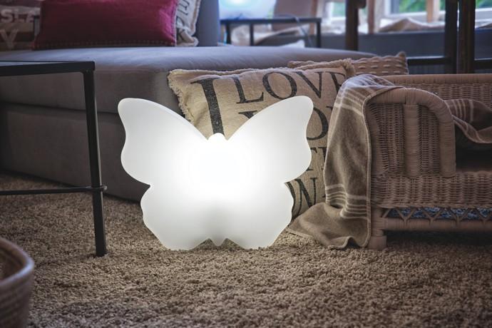 https://www.terrapalme.de/media/image/8seasons/8-seasons-shining-butterfly-schmetterling-stimmungsbild-3