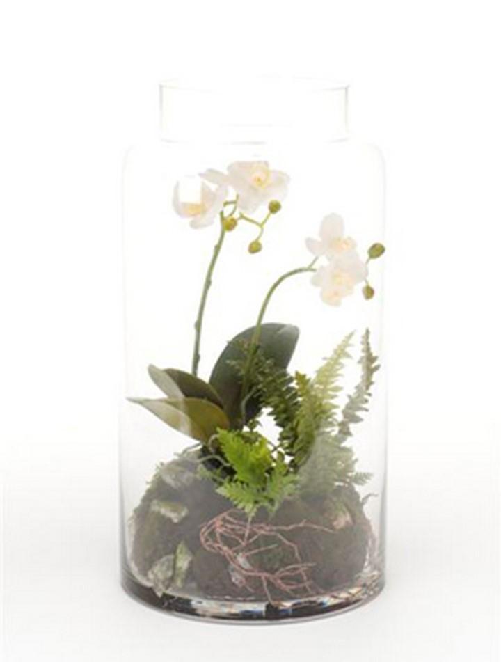 Minigarten Im Glas phalaenopsis mini garten 40 cm | orchideen kunstpflanze im glas