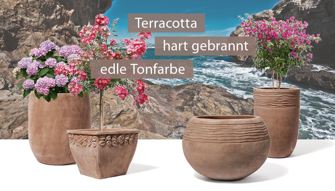 https://www.terrapalme.de/media/image/kirschke/sortiment_terrabruna.jpg