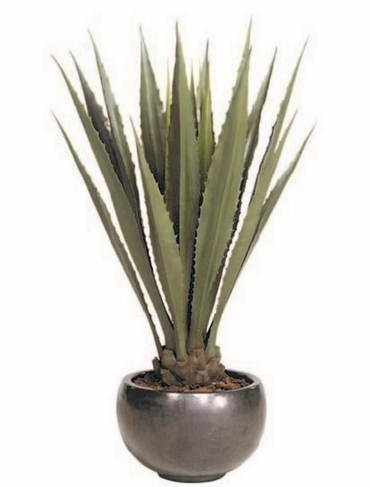 agave-giant-kunstpflanze-stimmungsbild