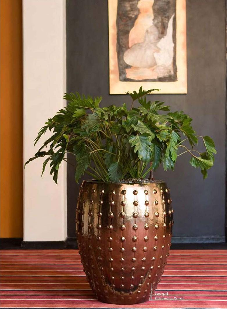 laos black keramik pflanzgef terrapalme heim und gartenshop. Black Bedroom Furniture Sets. Home Design Ideas