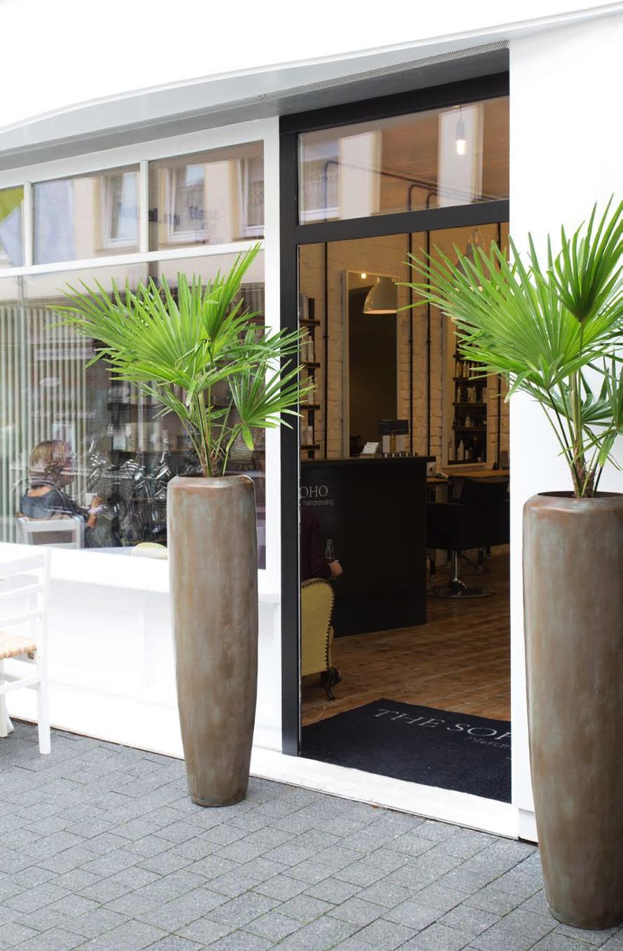 https://www.terrapalme.de/media/image/stimmungsbild/loft-bronze-pflanzvase-stimmungsbild-1.jpg