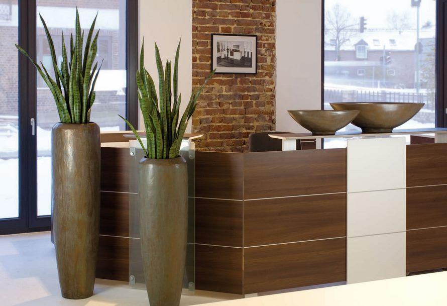 bogenhanf-fa-loft-bronze-pflanzvase-stimmungsbild
