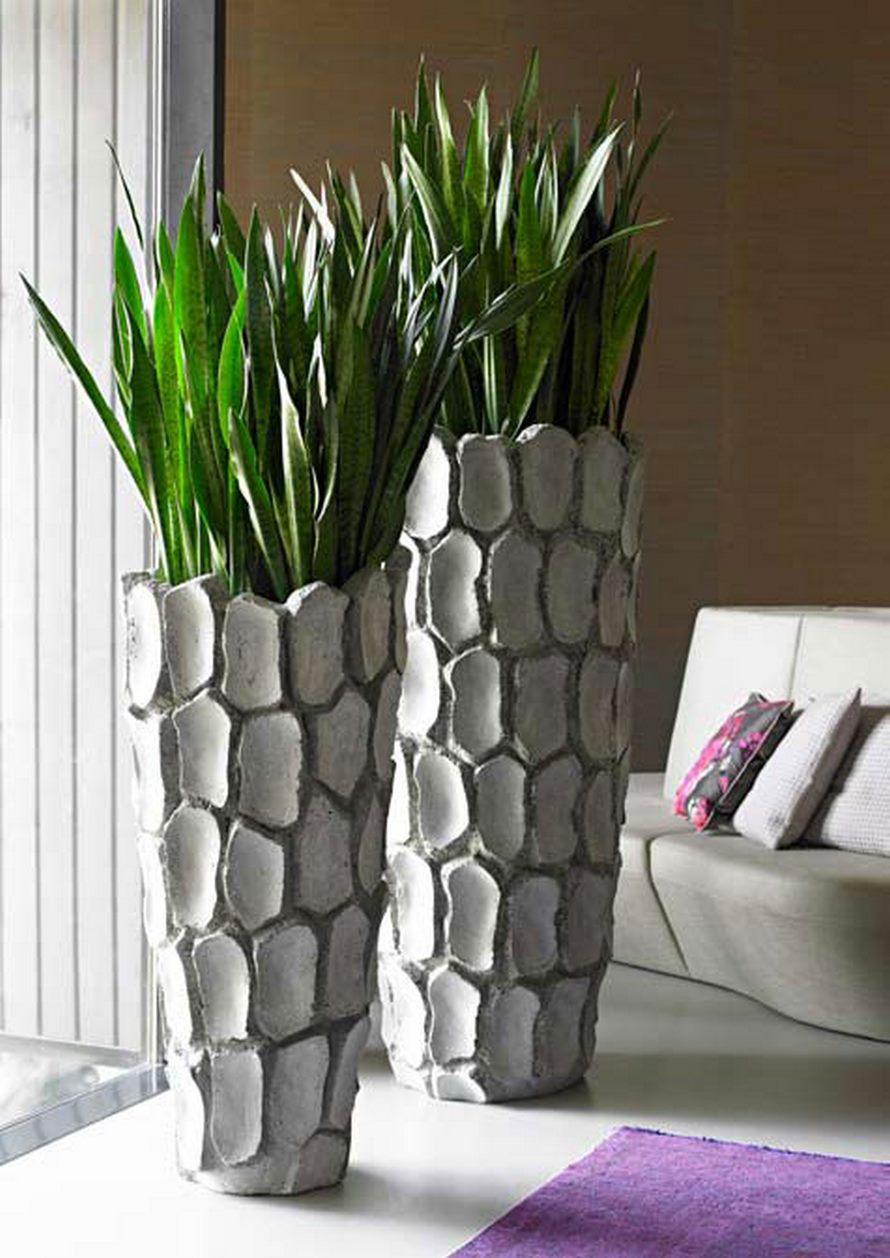 sansevieria-pfl-grey-stonecast-pflanzvase-stimmungsbild